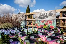 photo of almondsbury garden centre bristol bst