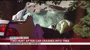 2 Hurt After Car Crashes Into Tree In Geneseo