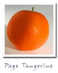Mandarin Tangerines Pixie Tangerines Mandarin Oranges Citrus Groves Ojai