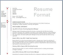 Format For Resumes For Job Form Of Resume For Job Sample Job Resume Format Sample Resume Best