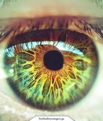 Your <b>eyes</b> can say a lot about your <b>personality</b> and special set of ...