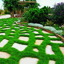flagstone patio with grass. You\u0027ll Achieve An Eye-calming \u201csoft Patio\u201d Effect, As Downey Calls It, That Needs Much Less Water Than A Traditional Bluegrass Or Fescue Lawn. Flagstone Patio With Grass L