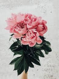 Floral Designs By Raegan Pin By Raegan Patin On B L O O M Flowers Flower Aesthetic