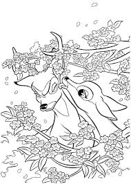 Small Picture 1615 best Animals images on Pinterest Drawings Coloring books