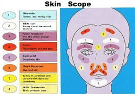 Skin Scanner Color Chart Colors Of Skin Quotes And Pictures Woods Lamp Color Chart
