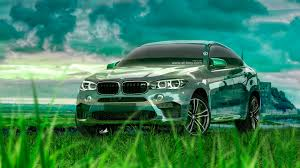 bmw x6 crystal nature car