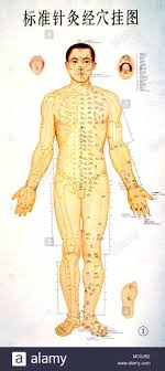 Chi Lines Chi Lines Marked Out On The Human Body As An