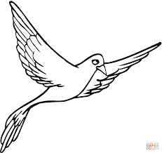 Small Picture Pigeon 14 coloring page Free Printable Coloring Pages