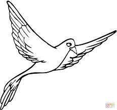 Coloriages Pigeons Coloriages Gratuits Imprimer S Coloriage Un Oiseau Qui Vole L