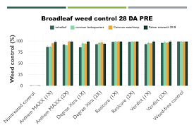 Weed Control And Response Of Yellow And White Popcorn