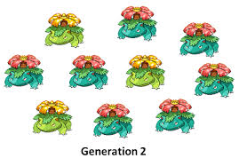 Burmy Evolution Chart 44 Symbolic Pokemon Shellos Evolution