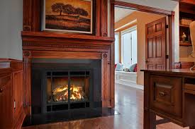 71 awesome gas fireplace inserts with er home design gooxoi