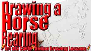 rearing horse drawing step by step. Plain Drawing Drawing A Horse Rearing Step By Instructions In Horse By N