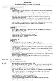 Siebel Architect Resume Cloud Architect Resume Samples Velvet Jobs 3