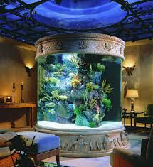 ... Large Size Inspiring Fish Tank Headboard Diy Pics Design Inspiration ...