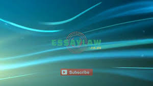law essay writing services services company law