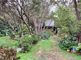 front yard vs backyard landscaping