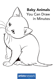 Wild drawing of animals Step How To Draw Animals Easy Kitten Artistsnetworkcom Amazoncom Perfect For Beginners How To Draw Easy Animals Artists Network