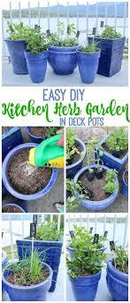 Herb Garden Best 25 Kitchen Herb Gardens Ideas On Pinterest Kitchen Herbs