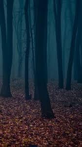 Dark Forest Wallpaper - KoLPaPer ...