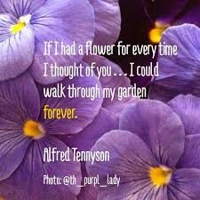 Purple Flower Quotes Tennyson And Purple Flowers Photography Quotes Purplicious