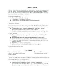 How To Write Good Resume Good Objectives To Write On A Resume