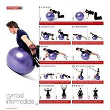 Buy New Escape Stability Ball Progression Poster Home Gym