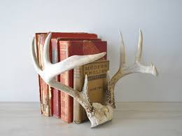 ... Antlers used as book ends