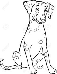 Chihuahua Coloriage De Chien Dalmatien L Duilawyerlosangeles