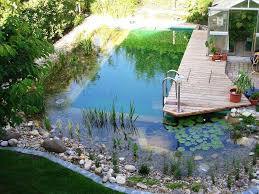 natural looking in ground pools. Fine Looking Natural Looking Swimming Pools Inside In Ground