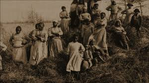 Priscilla, a Slave   The African Americans: Many Rivers to Cross   PBS