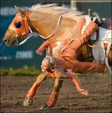 "Photo by Ryan Jackson / Edmonton Journal. rj_chucks_010909_03. Amber Graham of The Graham Sisters Trick Riding Team performs the ""Stroud Layout"" on her ... - rj_chucks_010909_03"