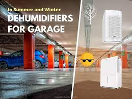 dehumidifiers for garage in summer