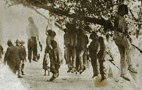 Image result for black genocide