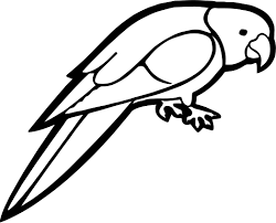 Small Picture Talk Parrot Coloring Page Wecoloringpage