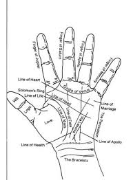 Diagram Of Hand Palmistry Palmistry Indian Palmistry