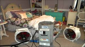 professional bed bug heat treatment