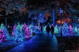 garden glow features a million lights surrounding visitors with a spectacle of unique installations amid some of the garden s most iconic locations