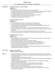 100+ [ Senior Internal Auditor Resume ] | Resume Samples Vault Com ...