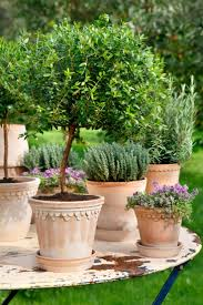 Garden Pots 1726 Best Flower Boxes Flower Pots And Planters Images On