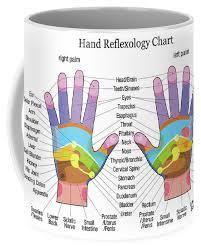 Hand Reflexology Chart White Coffee Mug