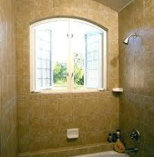 glass block bathroom window glass block window in shower showers blocks amazing bathroom windows with buffalo