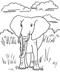 Printable Elephant Coloring Pages Page Pdf And Piggie Free