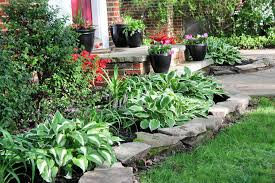 Small Picture Easy Landscaping Easy Maintenance Landscaping HouseLogic Yard Tips