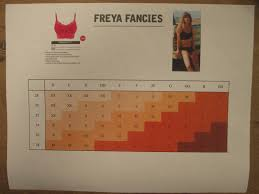 Off The Rack Reviewing Freya Fancies Bralette Hipster