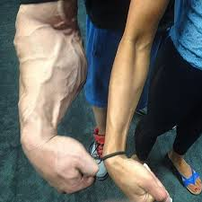 forearm size frank mcgrath 20 inch forearms