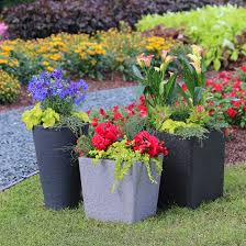 Small Picture Garden Design Garden Design with Patio Container Garden Rocket
