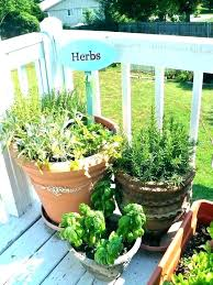 herb garden starter kit outdoor planters container seedling kits light ki