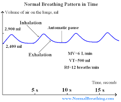 Normal Respiratory Frequency Volume Chart