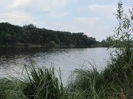 Про повернення земельної ділянки водного фонду до державної власності